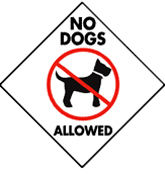 Sorry, No Dogs Allowed